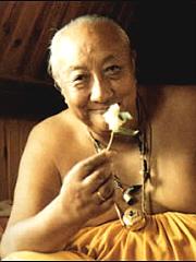 dilgo-khyentse-rinpoche